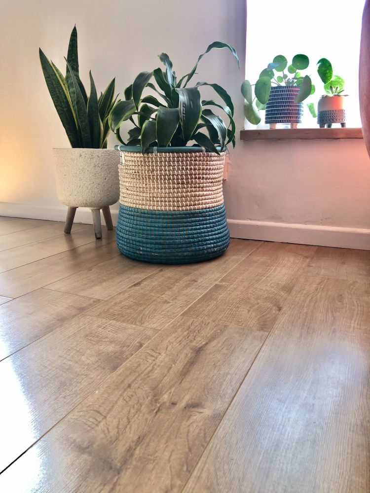 hard flooring in oak colour with houseplants in baskets and pots with light shining through the window
