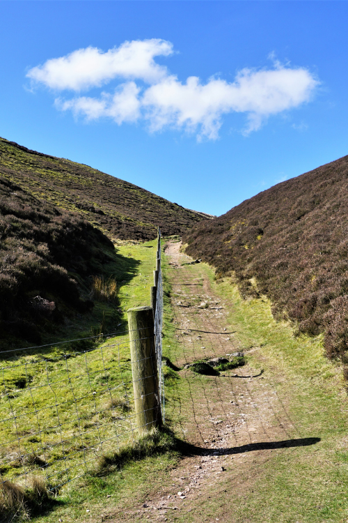5 running spots in Edinburgh you NEED to try