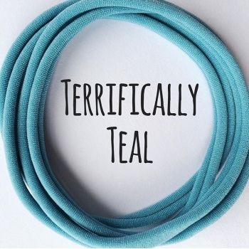 Terrifically Teal Dainties Nylon Headbands