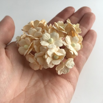 Mulberry Paper Flower Sweetheart Blossom Deep Ivory