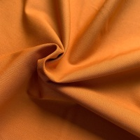 <!--013--> Dashwood Studio - Pop Solids - Ginger