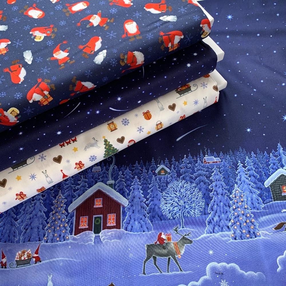 Lewis and Irene - Tomten's Christmas