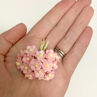 Mulberry Paper Flower Miniature Sweetheart Blossom Pale Pink