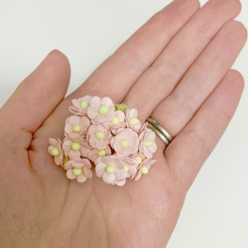 Mulberry Paper Flower Miniature Sweetheart Blossom Pink Mist
