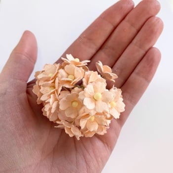 Mulberry Paper Flower Sweetheart Blossom Pale Peach