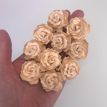 Mulberry Paper Flowers - Wild Roses 30mm  - Pale Peach