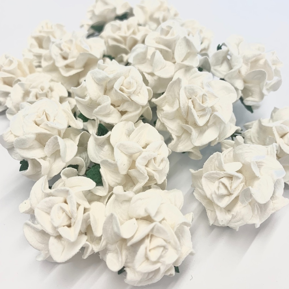 Mulberry Paper Flower - Tuscany Roses