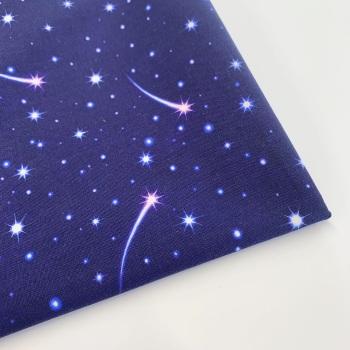 Lewis and Irene - Keep Believing  - Shooting Stars - Felt Backed Fabric