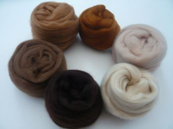'Beautiful Browns' - Merino Wool Tops Shades