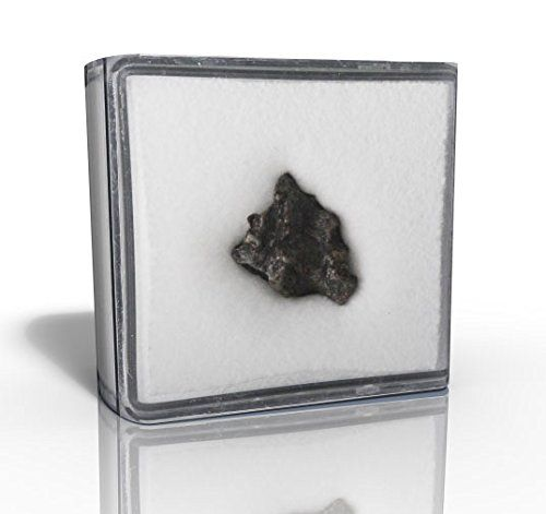 Deep Space Meteorite Dusk en Argentina More Than 5000 Years Ago + Certifica