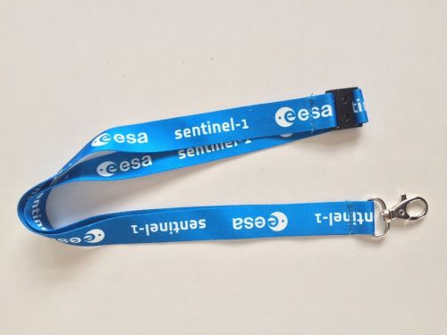 ESA Lanyard Space Angency Europeon Space Agency Rare Neck Tag ID Badge Keys