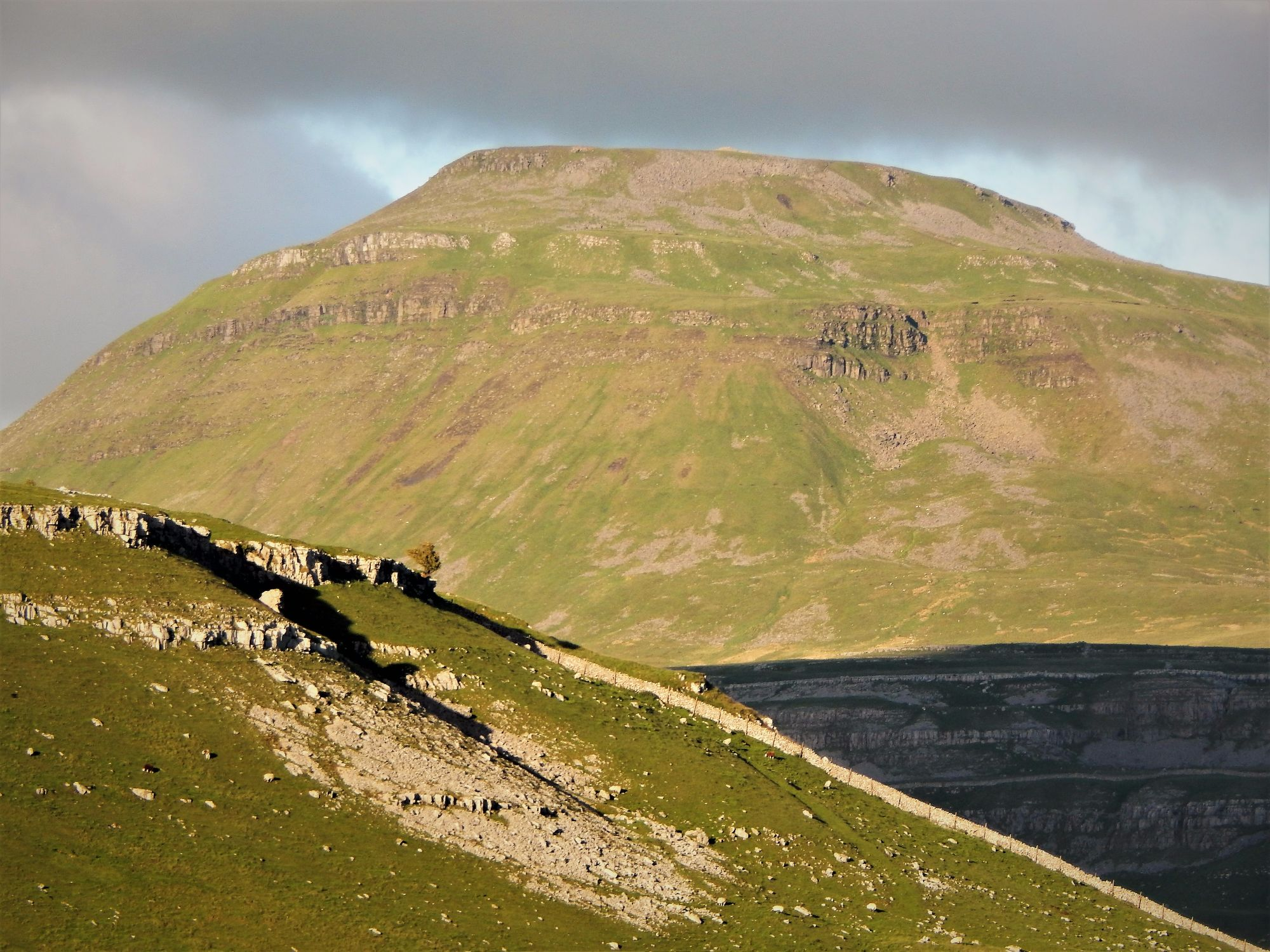 Ingleborough and lonely tree from Kingsdale