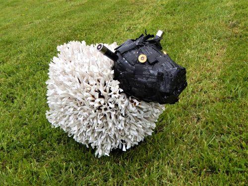 Shotgun Cartridge Sheep 2019