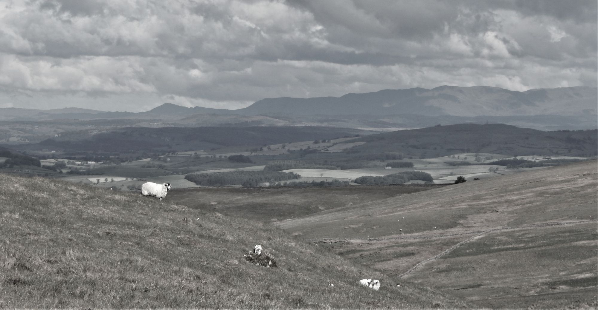 View from Tow Scar, close to the site towards the Lakeland Fells