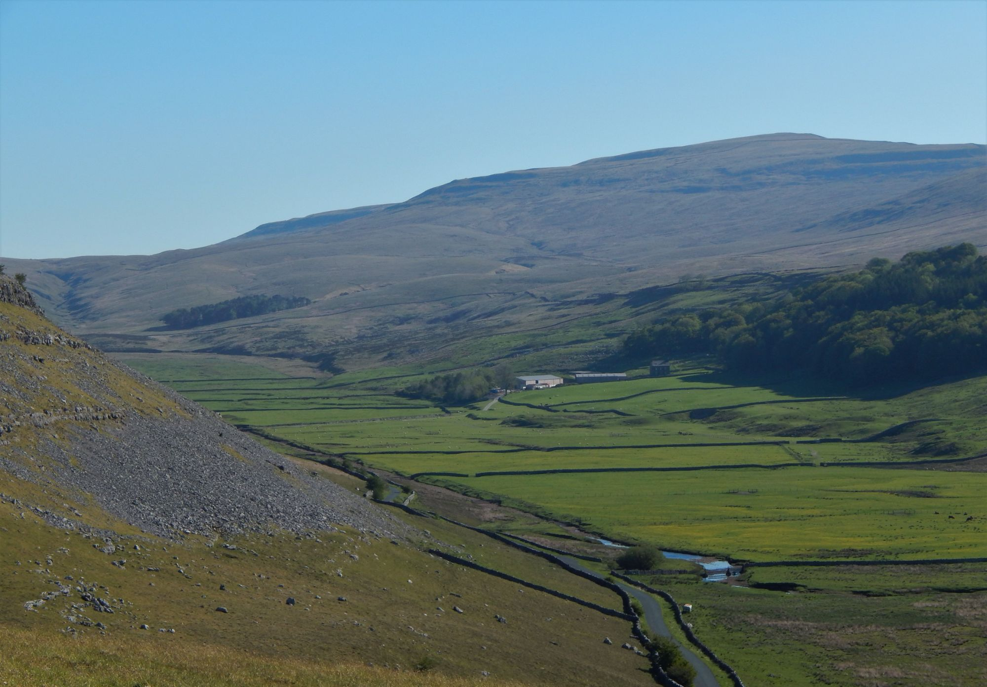 Whernside and the meadows of Kingsdale from Tow Scar
