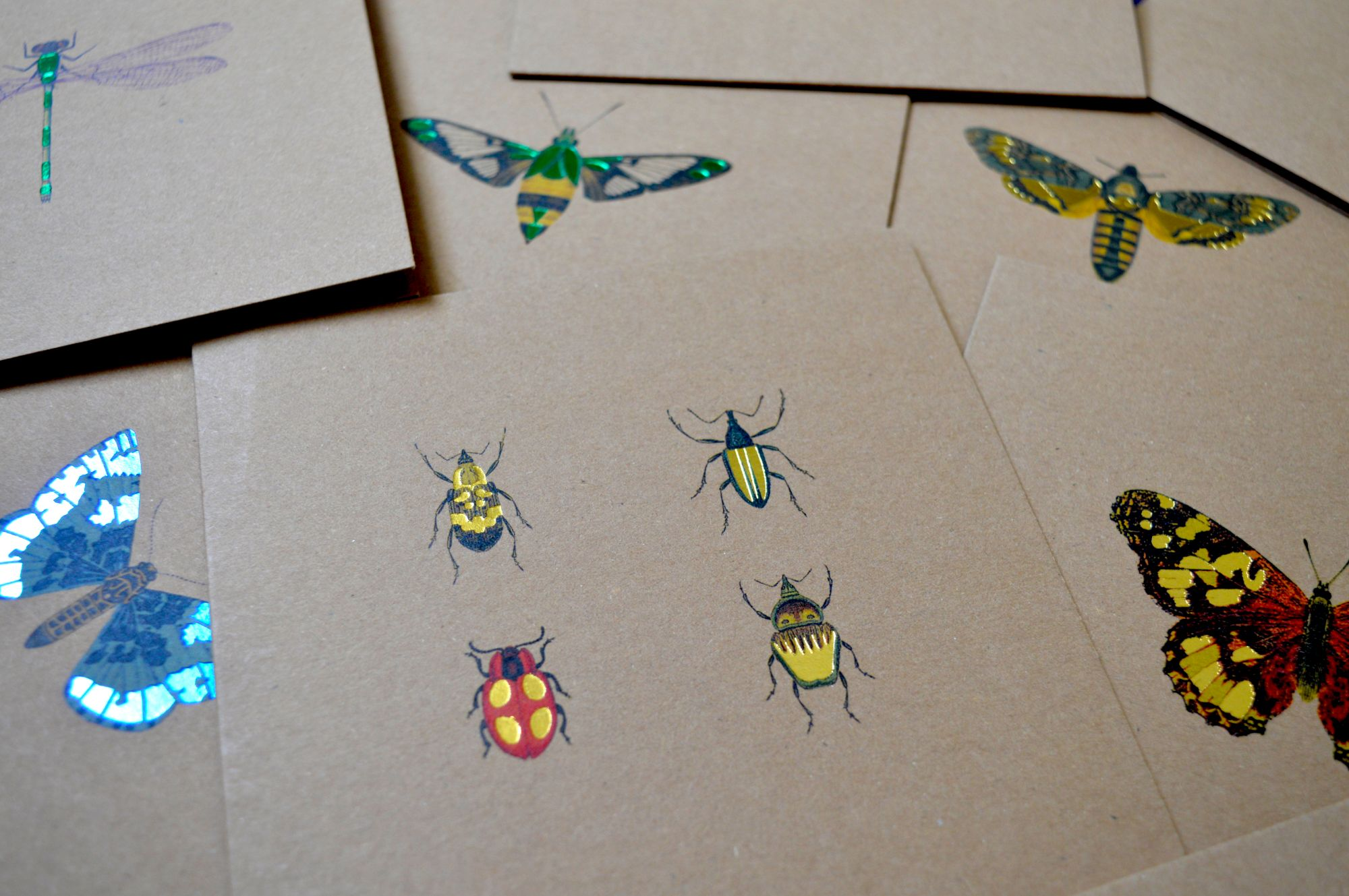 Selection of Foiled bug greeting cards