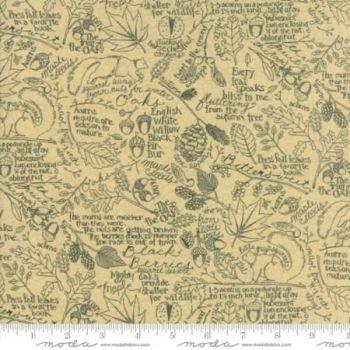 7001-13 Journal Script Black on Ivory