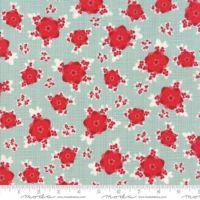 13170-16 Berry Burst Seasonal Mint Aqua