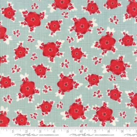 13170-16 Berry Burst Seasonal Mint Aqua