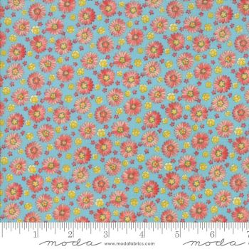 33393 15 Coco Daisies Bluebell