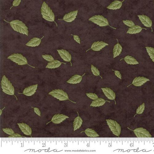 6762-17 Fresh Off The Vine Earth Brown
