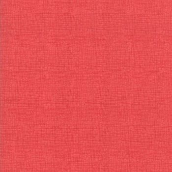 48626-58 Painted Meadow Pink Tiny Check
