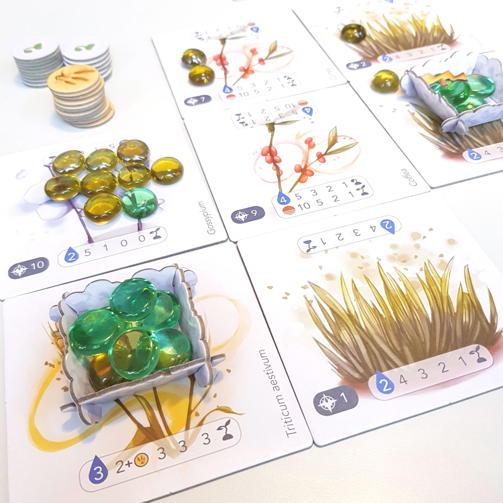 Petrichor Board Game
