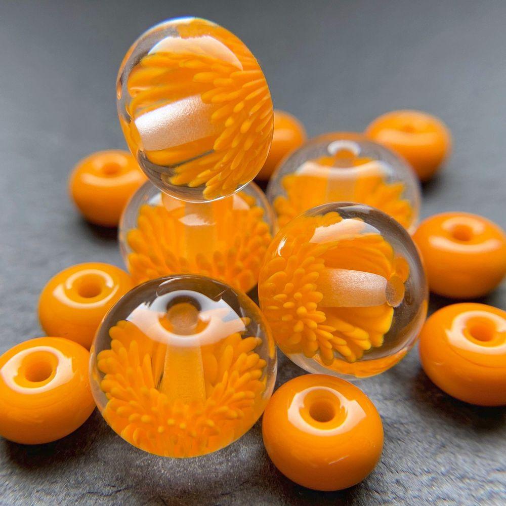 'Monarch' Anemones