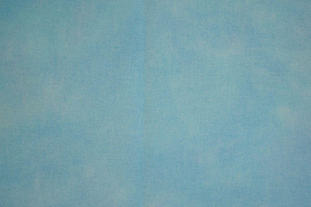 Blue Bird (16*18)