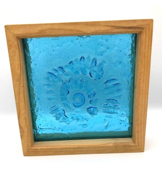 Framed Ammonite Aqua Blue (Large)