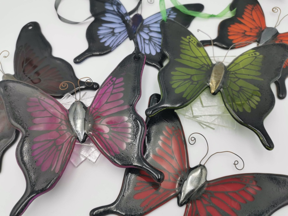 Black Edged Butterly