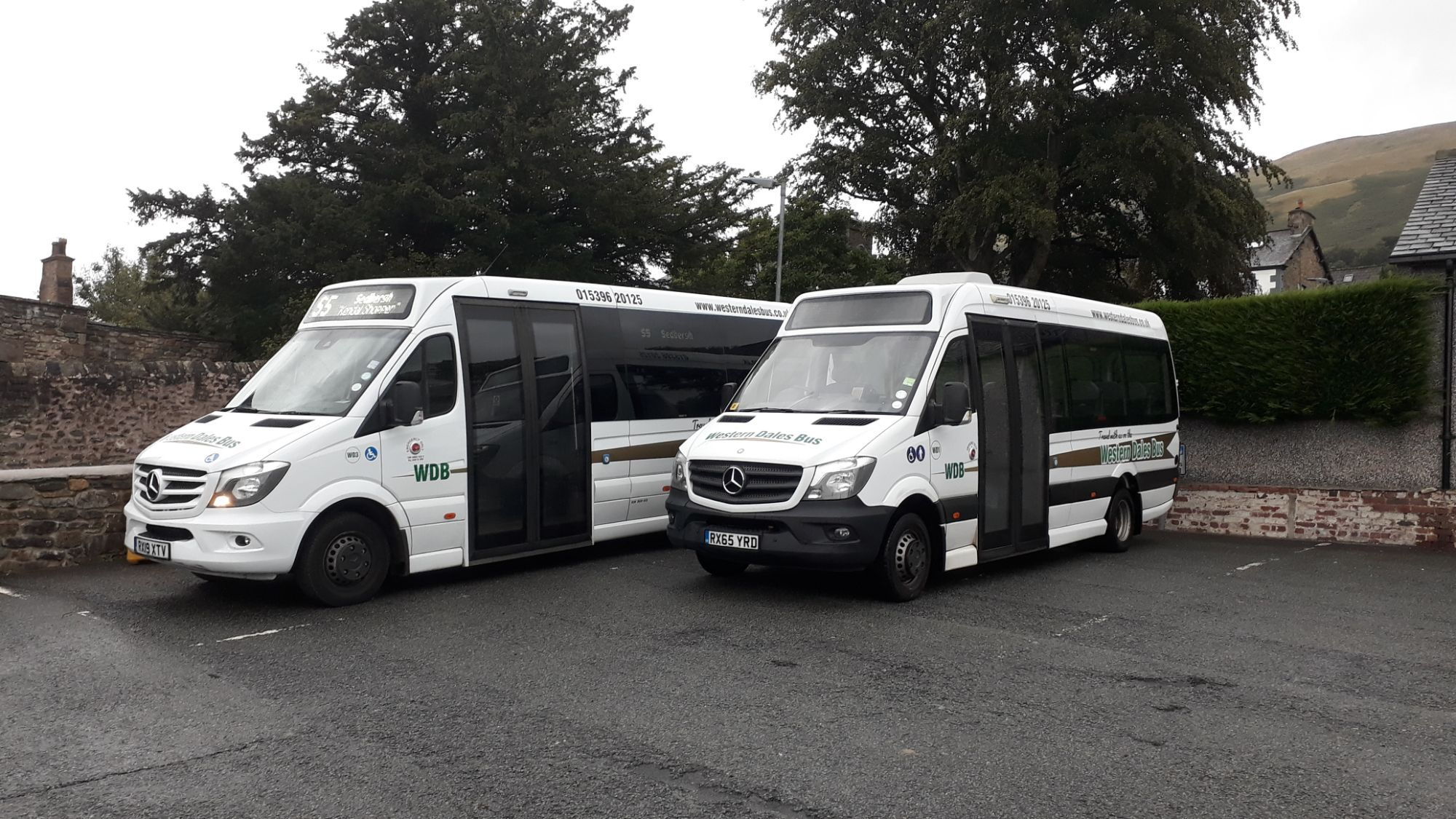 Our Buses 2019