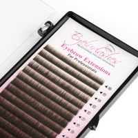 Eyebrow Extension Tray, Dark Brown, Mix Lengths 4-8mm