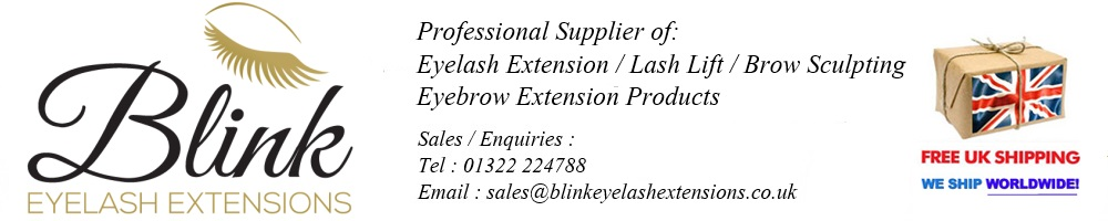 www.blinkeyelashextensions.co.uk, site logo.