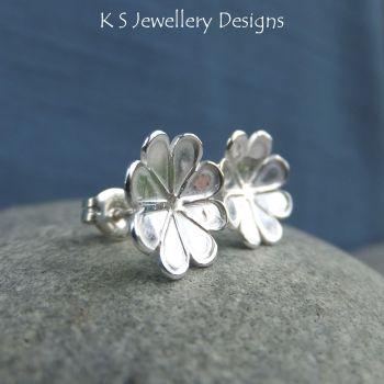 Daisy blossoms 4