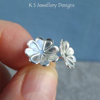 Daisy blossoms 2