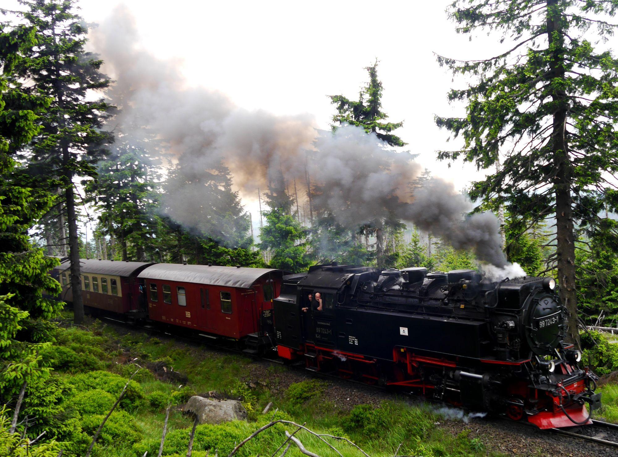 170612 Wertingerode  (347)