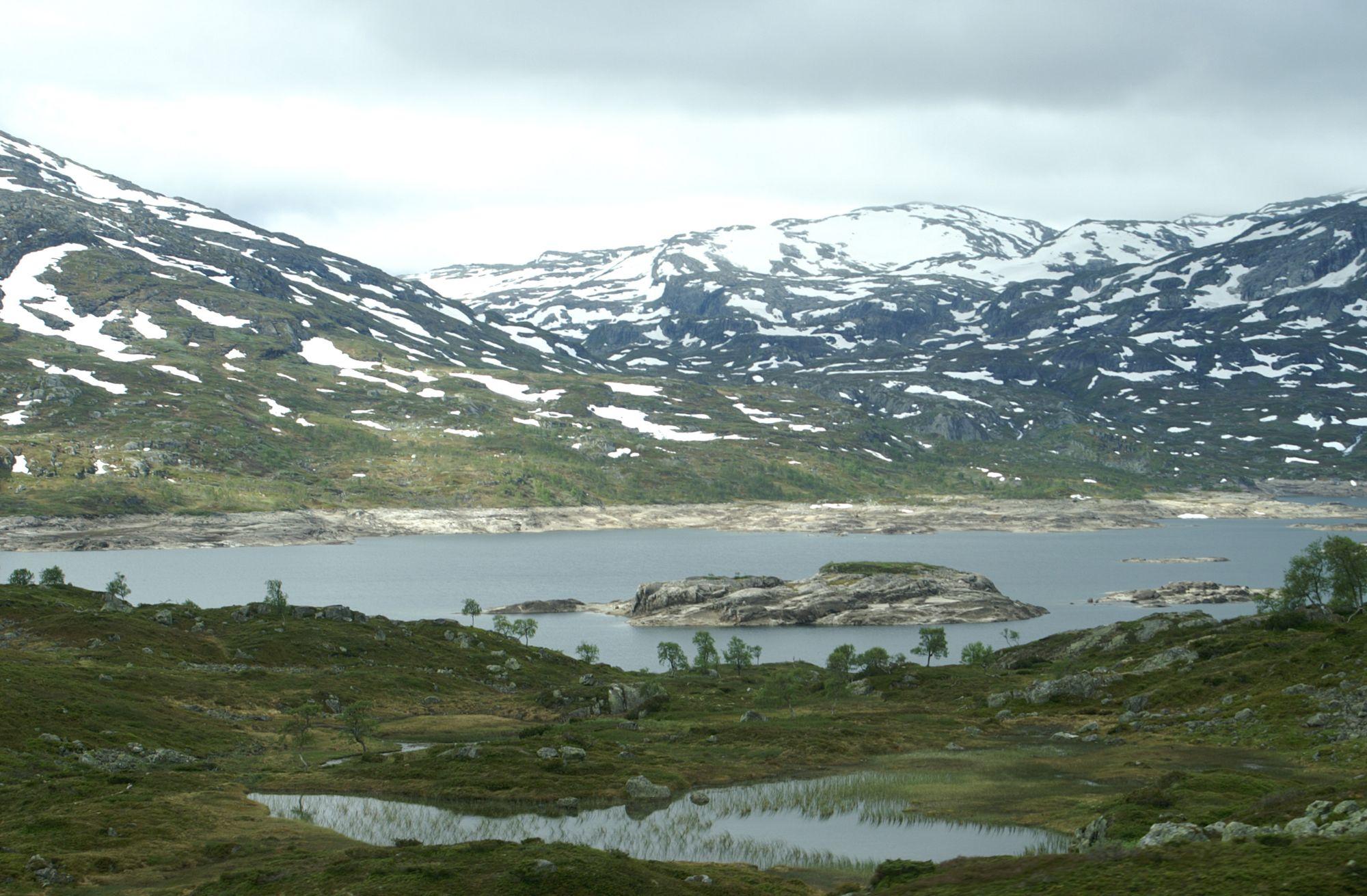 100626 Bergen (149)