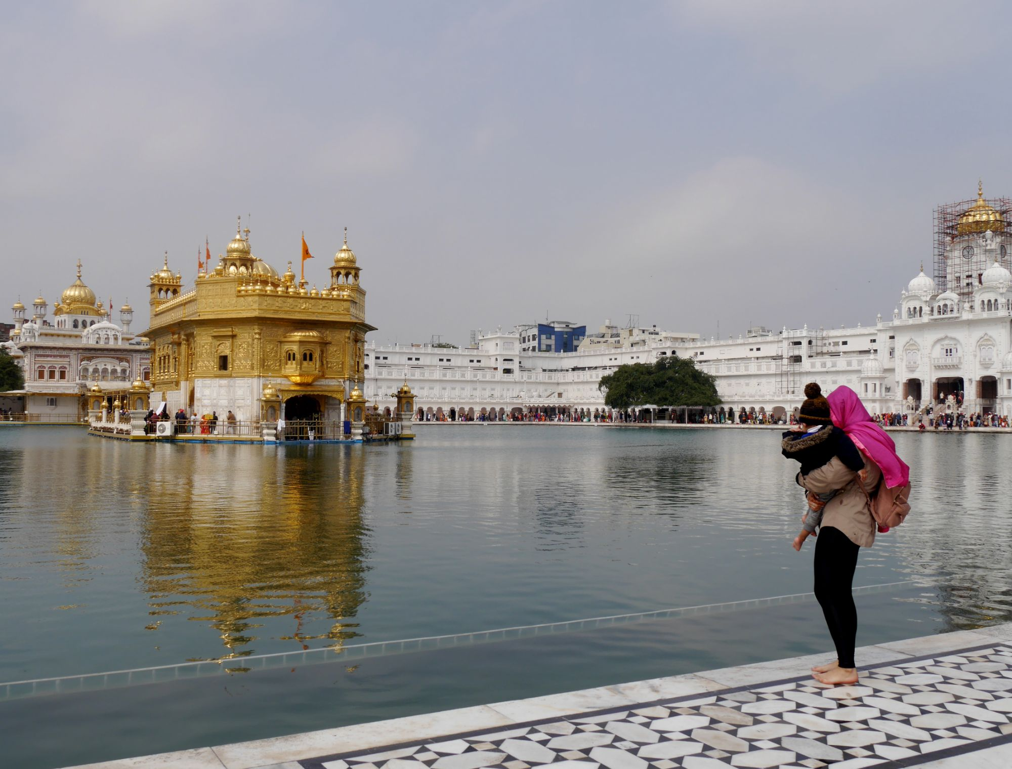 190221 Amritsar golden temple (257)