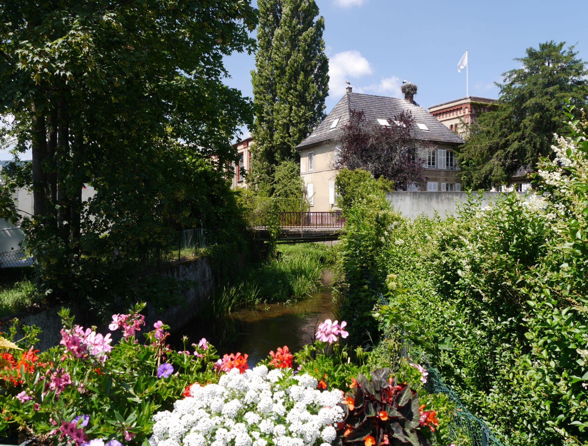 180623 Turckheim (119)