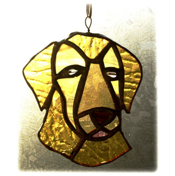 Dog Golden Labrador 002 @1312 Lyndsay 131227 12.00