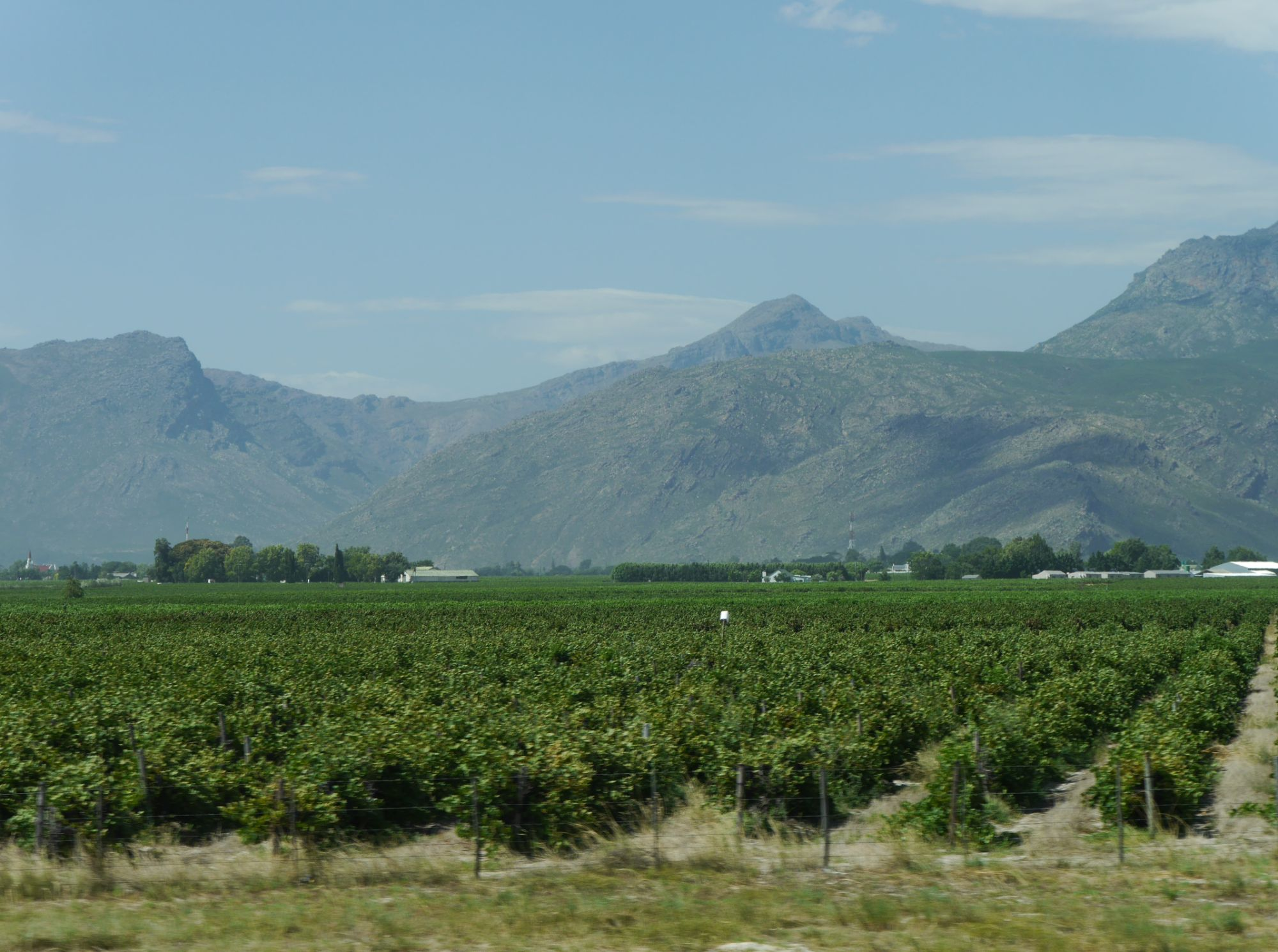 200216 Cape town (92).jpg