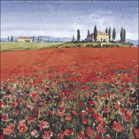 IS03 Poppies, Tuscany
