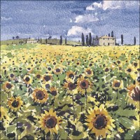 IS04 Sunflowers, Tuscany