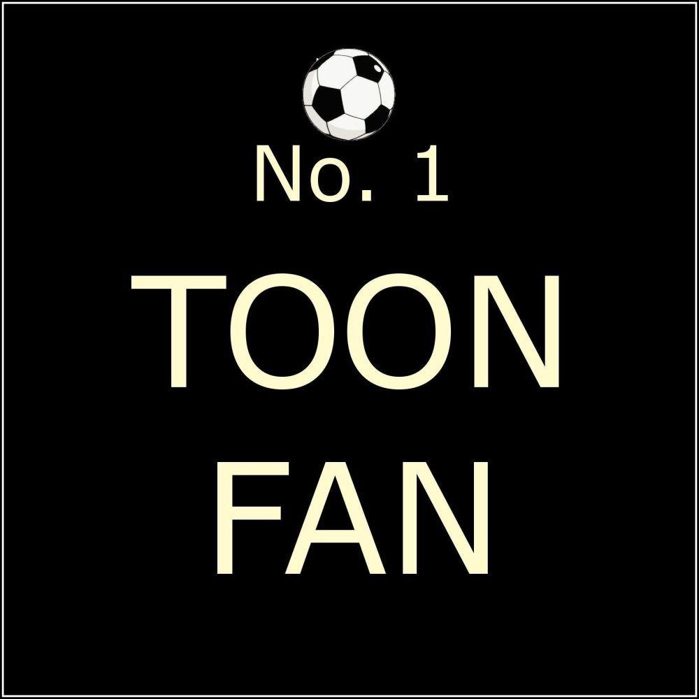 CO04 No 1 Toon Fan