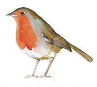 Robin inverted
