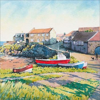 Craster Harbour in the Sun