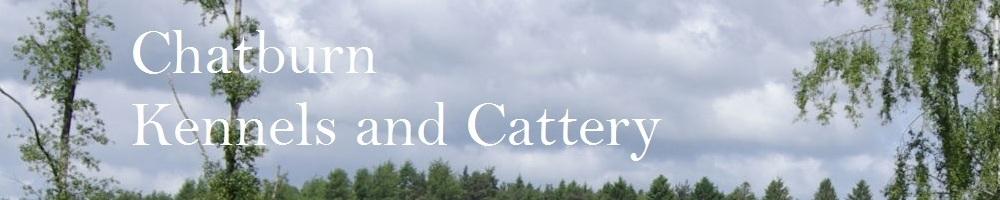 chatburnkennels, site logo.