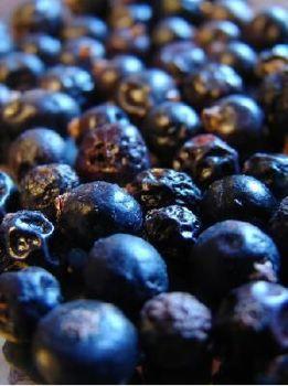 Juniper Berry Oil (2063)
