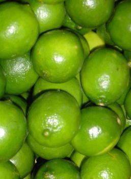 Lime Oil  (2072)